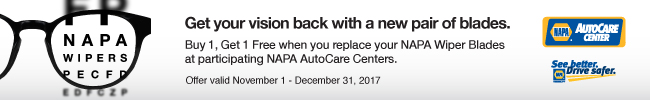 APA Wiper blade installed and we'll give you the second blade FREE!